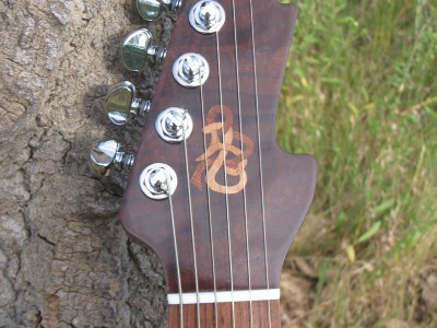Custom Hallow Body Guitar (DJP Guitar)